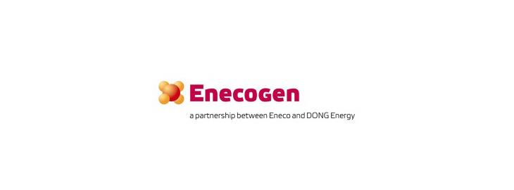 Logo Enecogen - Kalibratie en vervanging van vibratieprobes bij servicestop Enecogen